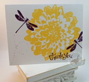 Thank-You-Dragonfly card