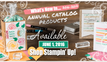It's Here! The New Catalog is Live!