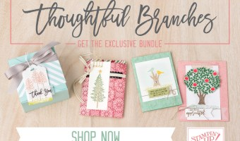 A New Set-Thoughtful Branches