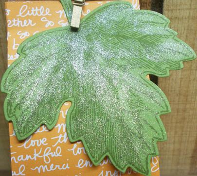 Fair-pic-8-Wink-on-leaf