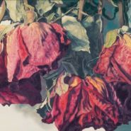 a-Marchand-Gathered-Roses-3