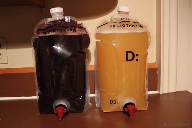 a photo of some merlot and chardonnay fermenting in clear bags