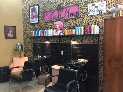 Wash Station at Kat's Meow Salon