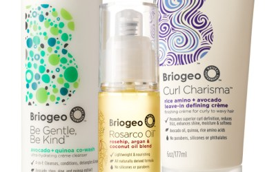 The Dish with DDR: No More Dry & Dull Hair with Briogeo