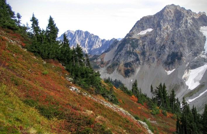View from Cascade Pass