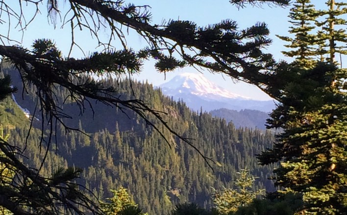Mount Adams from the south side of Naches Peak