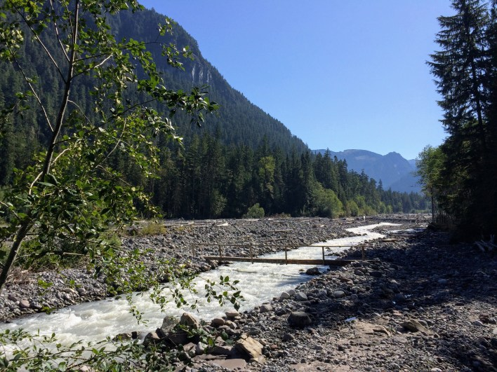 The Carbon River looks harmless today, but logs and boulders strewn around the valley testify otherwise