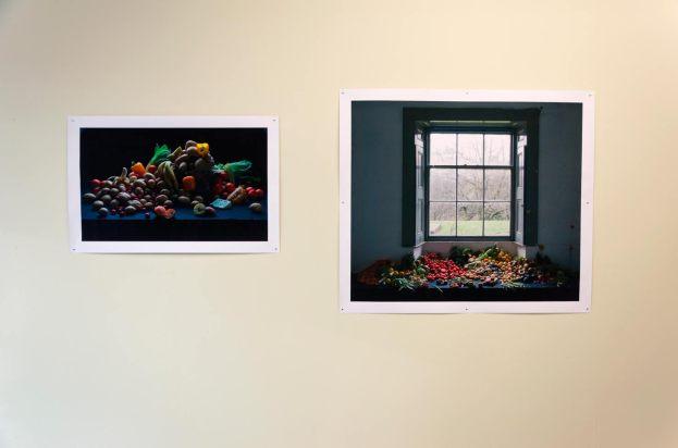 Exhibition installation - Caitlin & Andrew Webb Ellis 'Garden of Rubbish, 2011-2012