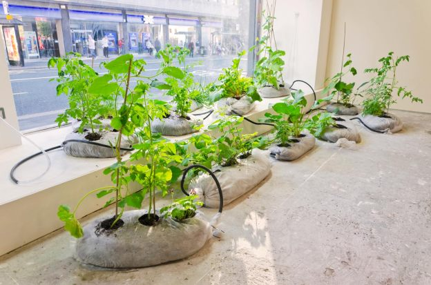 Urban Organisms (N55 - City Farming Plant Modules)