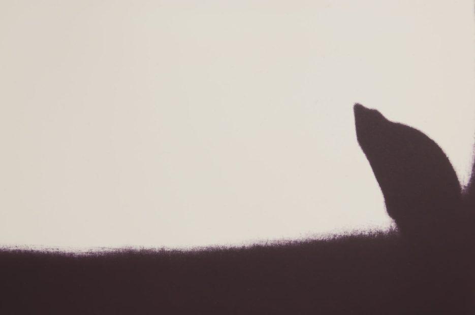 Shadowscape (detail)