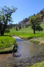 Beulah, Wyoming