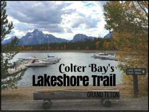 Colter Bay's Lakeshore Trail