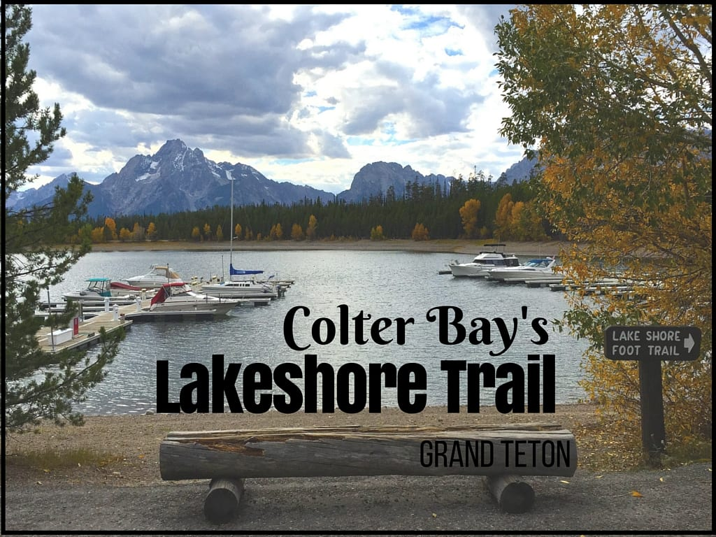 Colter Bay's