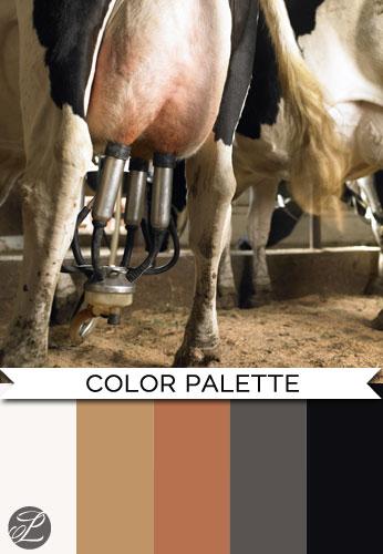 Cows Color Palette