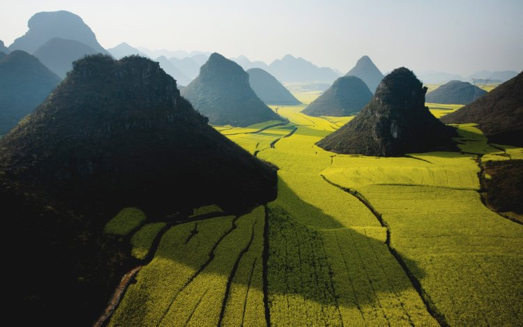 A field of small mountains and rice paddies.