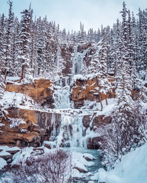 Tangle Creek, Icefields Parkway