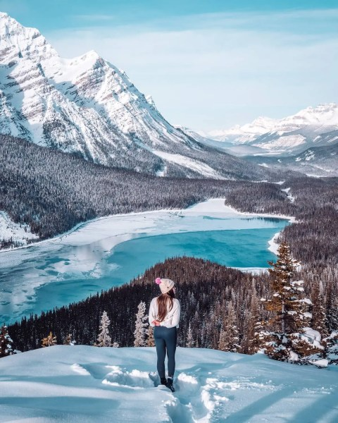 Bow Summit view of Peyto Lake, Banff in winter