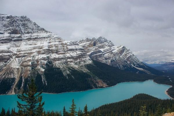 Bow Summit view of Peyto Lake, Banff in fall