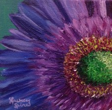 Purple daisy; 5x5 oil on canvas; SOLD