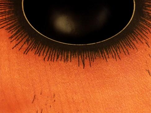 Détail de l'oeil bas