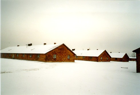 Voyage à Auschwitz (5/6)