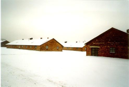 Voyage à Auschwitz (6/6)