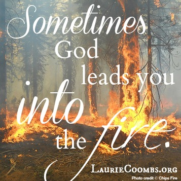 Laurie Coombs » {Lessons Learned} Sometimes God Leads You