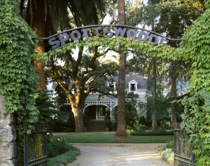 Grapes were first planted at the Spottswoode estate in 1882. (Photo courtesy of Spottswoode Vineyards.)