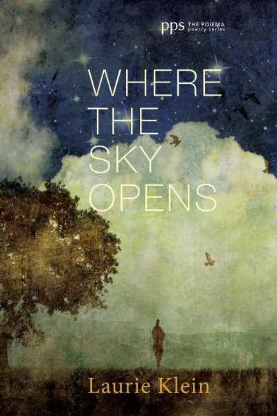 Where the Sky Opens, a Partial Cosmography