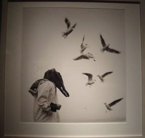 """Flor Garduño. Cocodrilo"""" Suiza, 1997"""