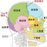頭蓋骨アプローチの骨格ヘッドスパ始まってます♪