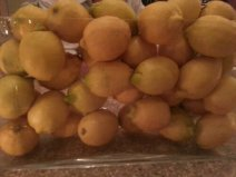 Lemon table display at Carluccios