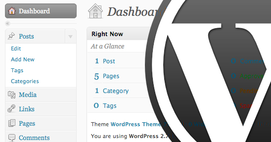 Tutorials About How to Build Custom Wordpress Theme
