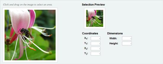 image area select jquery