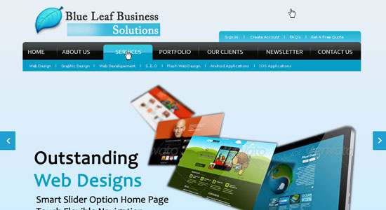 cover image-blue-leaf-business-sulutions