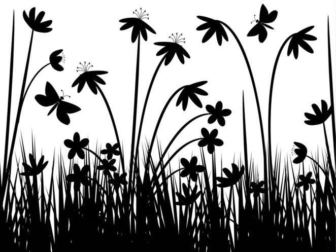 Black and White Wallpapers for Desktop10