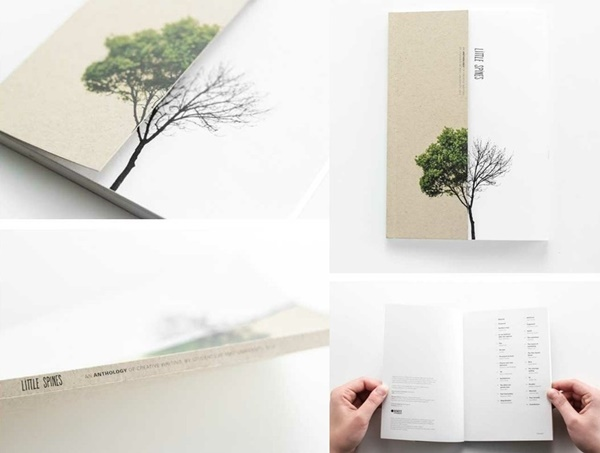Effective Book Cover Designs and Ideas1 (11)
