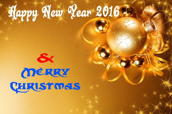 Beautiful Happy New Year Wallpapers HD (17)