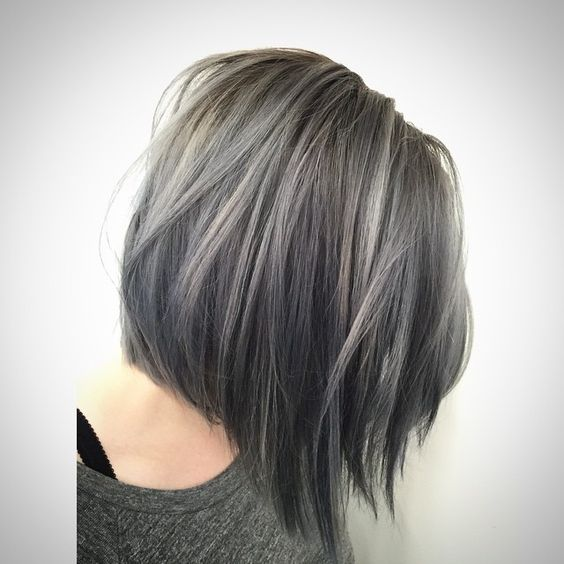 Gray Hair Color 02