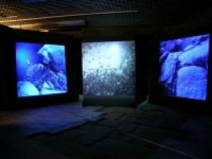 """Fotogramas de la instalación """"Noir"""" de Xosé Artiaga."""