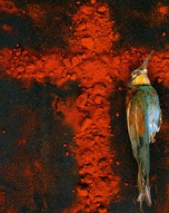 """""""Cruz con pájaro amarillo"""", de Manuel Vilariño Cruz"""