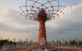 Expo di Milano impressioni