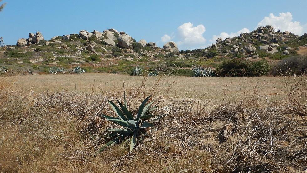 top five isola di Naxos