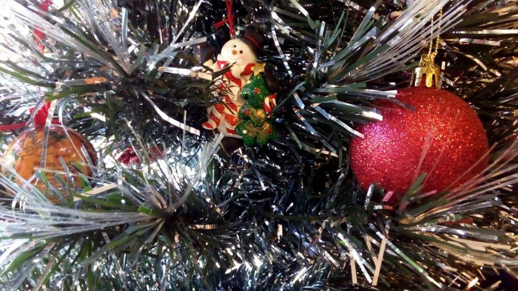 albero in ufficio