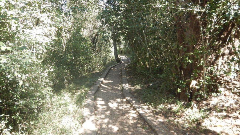 Canyon del Sumidero 3
