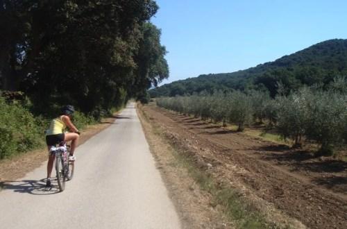 viaggiare green - viaggiare in bici itinerario