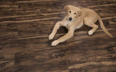 Vinyl Pro Classic Walnut Creek Waterproof Plank Flooring