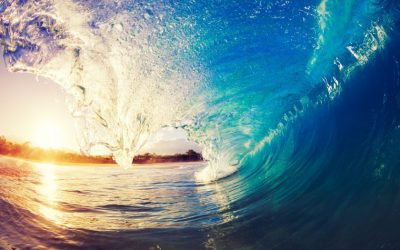 The New Wave in Business Intelligence