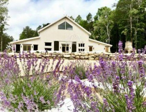 VISIT OUR FARM – LAVENDER OAKS FARM Chapel Hill, NC
