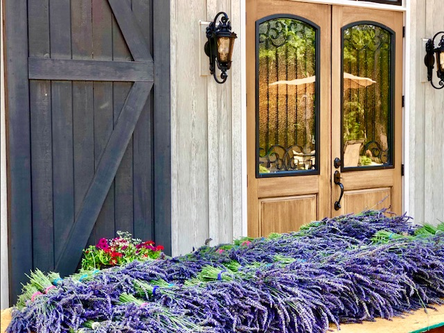LAVENDER OAKS FARM Chapel Hill, NC – LAVENDER FARM